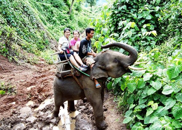 elephanttrekking01_1500